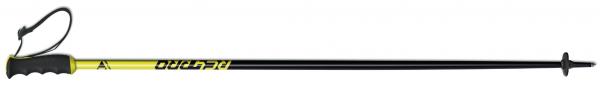 z30419 rc4 pro fischer kije narciarskie 2021